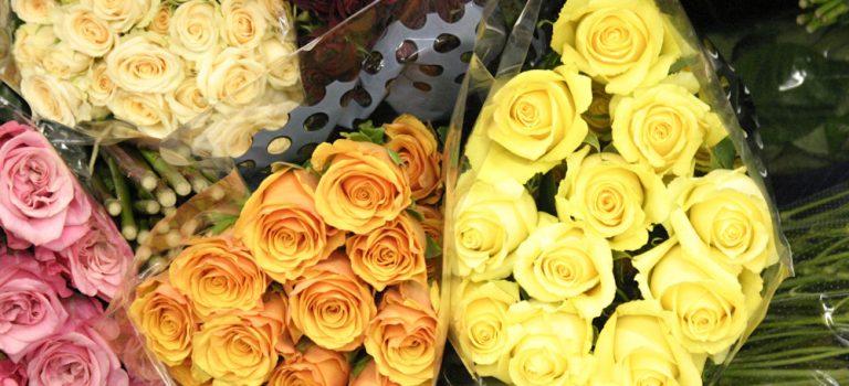 Gibt's Blumen zum Valentinstag?